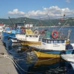 Mendirekte yürüyüşünüzü yaparken bir çok balıkçı teknesiyle karşılaşmak mümkün.