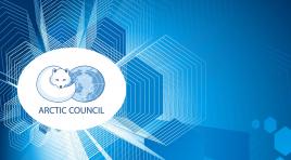 Arktik Konseyi